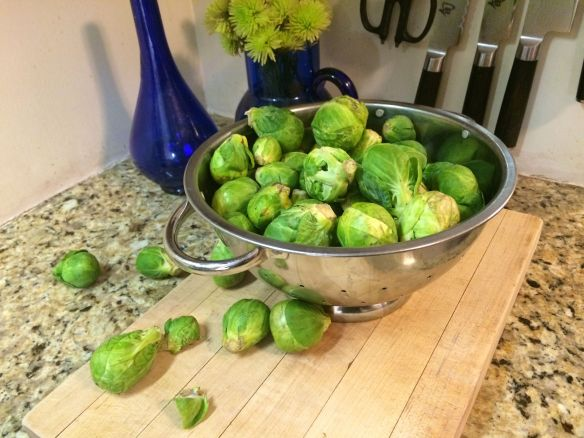 Bowl of Raw Brussels Sprouts